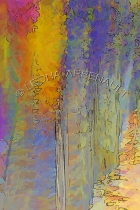 IMPRESSIONISTIC;LENS_CREATION;DIGITAL_ART;ABSTRACT;FLOWERS;VERTICAL