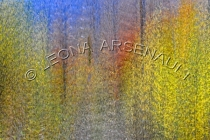 IMPRESSIONISTIC;LENS_CREATION;ABSTRACT;HORIZONTAL