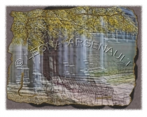 IMPRESSIONISTIC;LENS_CREATION;ABSTRACT;IRON_BENCHES;BENCHES;TREES;HORIZONTAL
