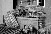CANADA;PRINCE_EDWARD_ISLAND;QUEENS_COUNTY;STANLEY_BRIDGE;LOBSTER_TRAPS;TRAPS;SHE