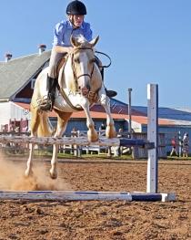HORSE SHOW LITTLE