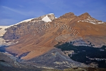 CANADA;ALBERTA;ICEFIELD_PARKWAY;CANADIAN_ROCKIES;ROCKY_MOUNTAINS;SNOW;FALL;HORIZ