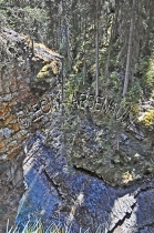 CANADA;ALBERTA;BANFF_NATIONAL_PARK;JOHNSTON_CANYON;ROCKS;FOREST;TREES;LIMESTONE;