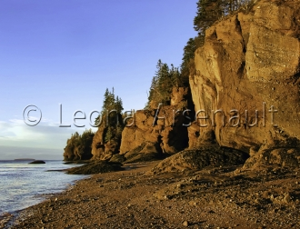 CANADA;NEW_BRUNSWICK;HOPEWELL_ROCKS;BEACH;WATER;ROCKS;HORIZONTAL