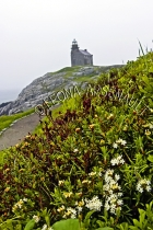 CANADA;NEWFOUNDLAND;ROSE_BLANCHE_HARBOUR_LE_COU;LIGHTHOUSE;WATER;LANDSCAPE;SCENI