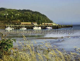 CANADA;NOVA_SCOTIA;LONG_ISLAND;BOATS;NAUTICAL;WATER;WHARF;WATERSCAPE;HORIZONTAL;