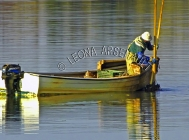 CANADA;PRINCE_EDWARD_ISLAND;QUEENS_COUNTY;STANLEY_BRIDGE;DORY;BOAT;WATER;OYSTER_