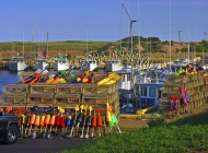 CANADA;PRINCE_EDWARD_ISLAND;PRINCE_COUNTY;SEACOW_POND;FISHING_BOATS;BOATS;LOBSTE