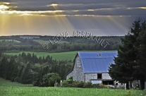 CANADA;PRINCE_EDWARD_ISLAND;QUEENS_COUNTY;NEW_GLASGOW;SUNSET;FIELDS;DUSK;FARMING
