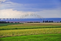 CANADA;PRINCE_EDWARD_ISLAND;PRINCE_COUNTY;NORTH_CARLETON;POTATO_FIELD;HAY_FIELD;