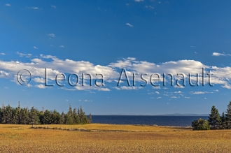 CANADA;PRICE_EDWARD_ISLAND;QUEENS_COUNTY;POINT_PRIM;FIELDS;FARMING;WATER;HORIZON