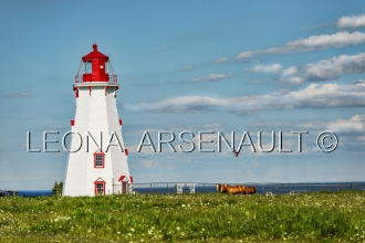 CANADA;PRINCE_EDWARD_ISLAND;KINGS_COUNTY;PANMURE_ISLAND;LIGHTHOUSE;HORSES;SCENIC